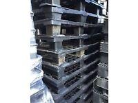 13 Plastic Pallets