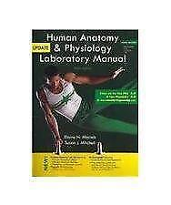 Human anatomy books ebay human anatomy and physiology marieb fandeluxe Images