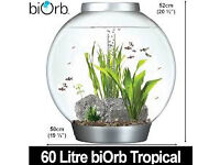 60 litre cold water biorb tank
