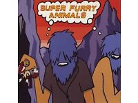 1 x TICKET...SUPER FURRY ANIMALS FRIDAY 9TH DECEMBER. LONDON'S ROUNDHOUSE, CAMDEN.