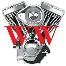 Wally Wheelies