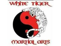 Shiro Tora White Tiger Martial Arts Academy Croydon Classes