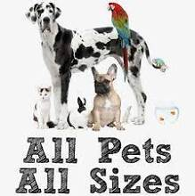 PET SITTING 24 HOUR CARE ! BUDGET PET SITTING Ipswich Ipswich City Preview