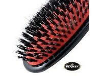 Denman D81S Small Porcupine-Style Grooming Brush: Brand New