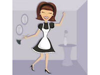 Selfemployed Cleaner available 07863740522