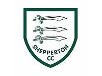 ** Shepperton Cricket Club - LOOKING FOR NEW PLAYERS **