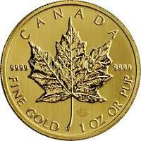 Wanted: WANTED GOLD MAPLES-PAYING OVER SPOT