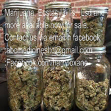 Goodwill shop.. MMJ available