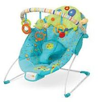 baby bath and vibrating baby chair