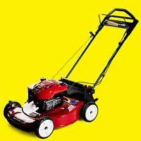 Professional Lawn Mower & Small Engine Repair