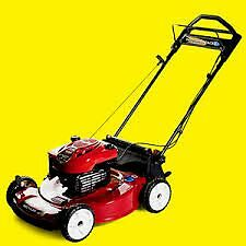 Professional Lawn Mower & Small Engine Repair