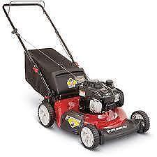 Gas Push Lawn Mowers