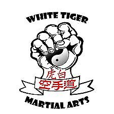 Traditional and Contemporary Martial Arts Classes