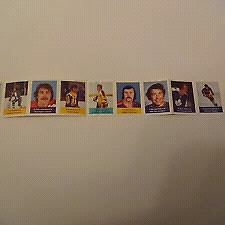 1974-75 Hockey Stamps NHL Action Players by Lablaws