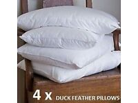 4 feather pillows in wrapper