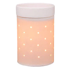 WANTED SCENTSY PRODUCT