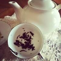 Tealeaf Reader available for your next event/party/gathering