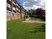 3 bedroom spacious flat for Rent