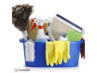 exprienced housekeeper/childminder available mondays/tuesdays £10 per hour