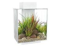 Fluval edge 46l fish aquarium