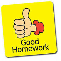 Homework, essays and assignments completed by experts!