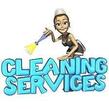 VLB Cleaning Services ( end of tenancy,ironing,cleaning)