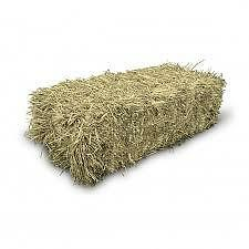 2 year old hay for sale