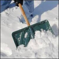 WANTED: SOMEONE TO SHOVEL, SNOW REMOVAL DRIVE WAY, CASH PAID