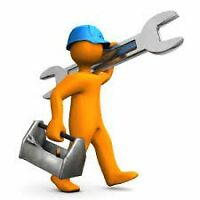 Reliable Hardworking Labourer $10/hr ANY JOB