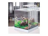 FISH TANK Ciano Nexus 25 LED Aquarium Light 22 Litres Tank White