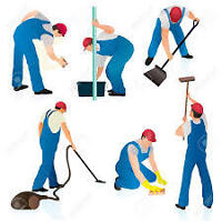 Cleaning, Ironing , Handy Man, Auto detailing ..FROM $15/hr
