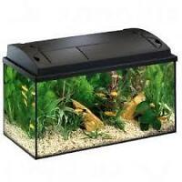 Aquarium 10 galons tout equipée