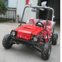 Dune Buggy 125cc 2 Seater.  GET ONE TODAY NEW MODEL.