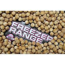5kg GENUINE MAINLINE FROZEN CELL BOILIES(THE LAST 5KG I HAVE AVAILABLE)
