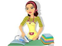 IRONING YOU HATE IT I LOVE IT