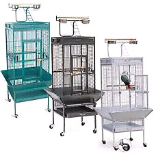 WANTED LARGE CAGE