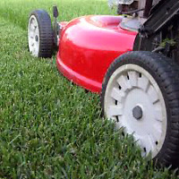 Lawn Care  and Gardening !