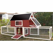 Advantek chicken coop