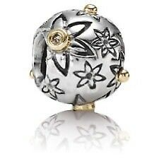 I am looking for this pandora charm