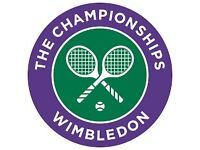 1X Sunday 10th Mens Final Wimbledon Ticket - genuine offers considered