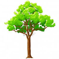 TREE ~ HEDGE ~ LAWN SERVICE Call/Text 204-793-4558