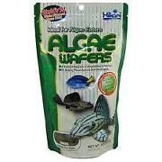 Algae Fish Food