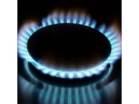 Local Gas Safe Engineer For all Gas Work, Cookers/Boilers/Certification - Very Competitive!