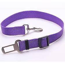 Purple DOG SEAT BELT