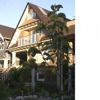 Furnished Kitsilano Character 3 Bedroom Duplex Home #135