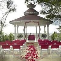 Destination Wedding Planning - Bride & Groom May Travel Free!