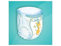 Pampers Baby-Dry Pull Up Pants (Nappies) Size 6 (16+ kg), Pack of 38 + 12 = 50 Pants, BRAND NEW