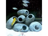 ***WANTED*** Aquarium caves & bogwood