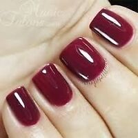 Manucure Gel Nails 20$