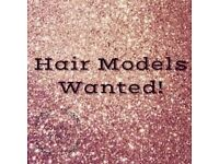 DESPERATE NEED FOR A HAIR MODEL